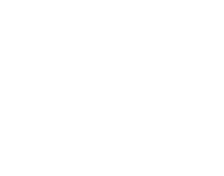 Wifler Law Group